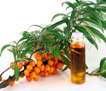 Ароматерапия - какие эфирные масла полезны для здоровья