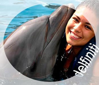 Чем полезно купание с дельфинами