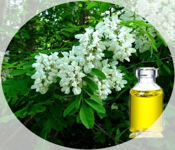 Эфирное масло акации - лекарство и косметика