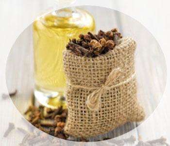 Как сделать гвоздичное масло в домашних условиях